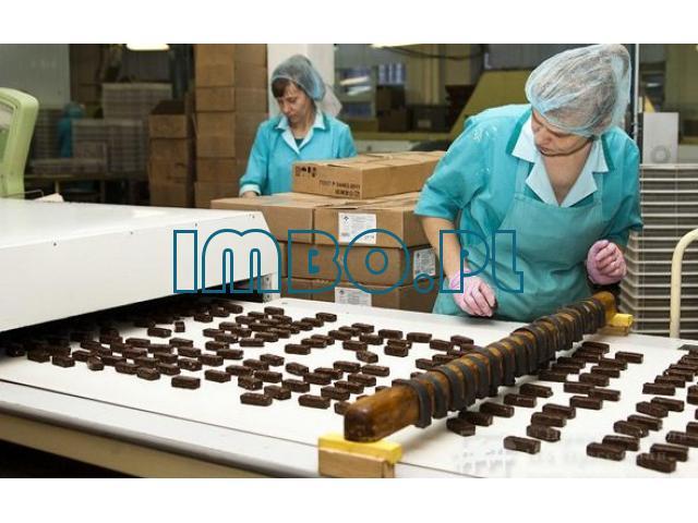 Рабочая на шоколадную фабрику - 1