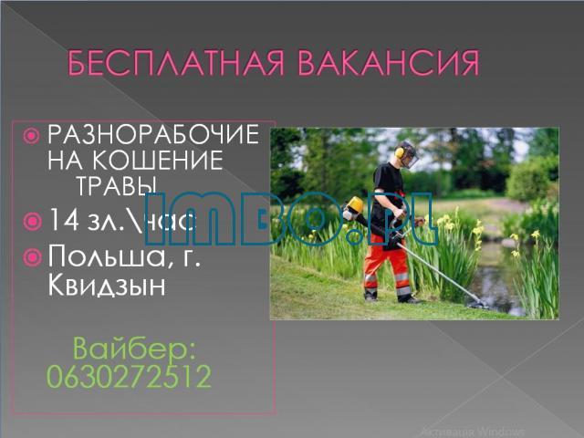 Разнорабочие, кошение травы - 1