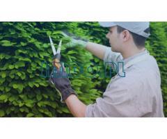 Робота садівника